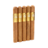 "5 Vegas Gold Toro (6.0""x50) Pack of 5"
