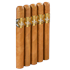 "5 Vegas Gold Robusto (5.0""x50) Pack of 5"