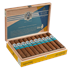 "AVO Syncro Ritmo Robusto (5.0""x50) Box of 20"