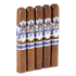 "Ave Maria Divinia (No Tube) (Toro) (6.0""x54) Pack of 5"