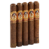 "Gurkha Seduction Robusto (5.0""x55) Pack of 5"