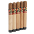 "Gurkha Master Select Robusto #4 (6.0""x50) Pack of 5"